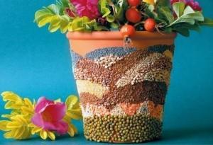 vaso- sementes-1