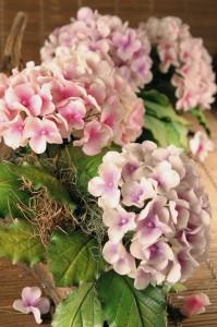 arranjos-flores-biscuit