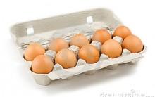 Como Usar Caixa de Ovo Para Artesanato – Dicas de Como Fazer