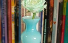 Rosas Coloridas – Passo a Passo de Como Fazer
