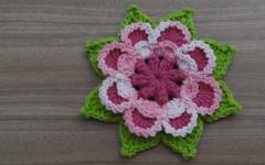 Flor Marie Em Crochê – Material e Vídeo