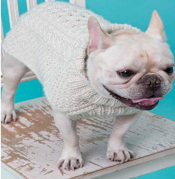 Suéter de Tricô Para Cachorro– Material e Receita