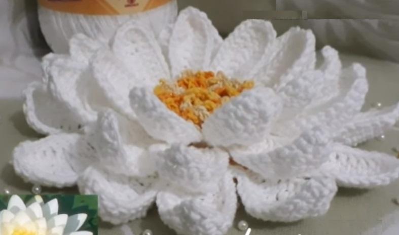 Flor Vitória Régia Em Crochê – Material e Vídeo