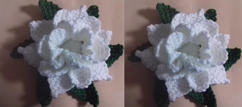 Flor Gardênia Em Crochê Tunisiano – Material e Vídeo