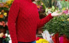 Blusa Vermelha Casa de Abelha Em Crochê – Material e Receita