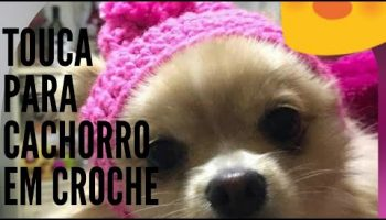 Gorro Pet Crochê – Material e Vídeo